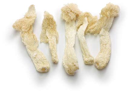 dried bamboo mushrooms, chinese food ingredient