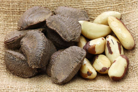 brazil nuts in shell and shell removal