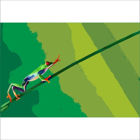 a tree frog which climbing on the branch of plant Stock Vector - 13074180