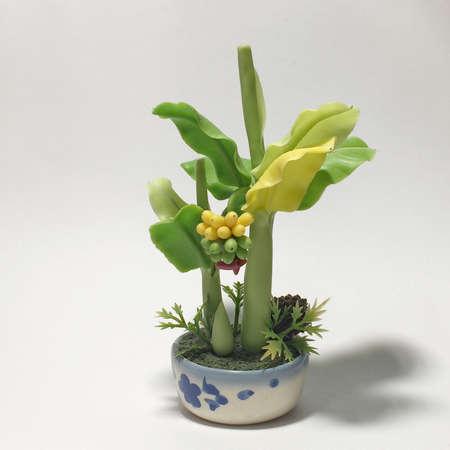illustration: Small banana