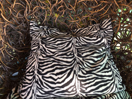 pillows: Zebra pillow