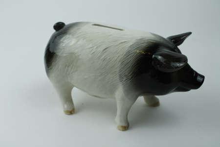habbit: Piggy Bank