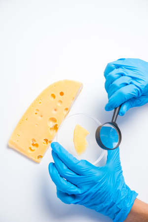 Research of cheese in the laboratory on GMOs and harmful substances