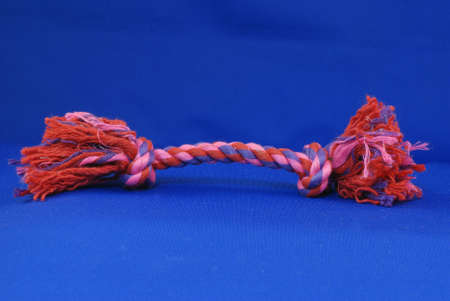 dog tug rope toy on blue background