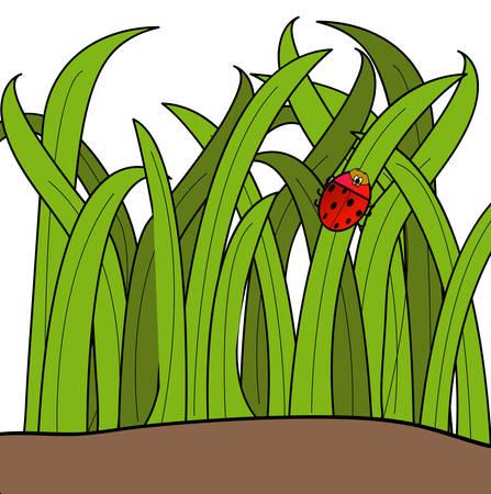 lady bug cartoon klimmen een blad van gras - vector