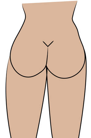 illustration of the curves of a womans buttocks Illustration