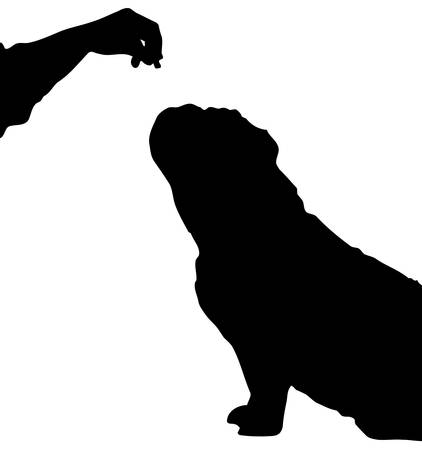 silhouette of english bulldog begging for a treat