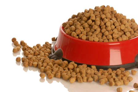 bowl of dog kibble overflowing in dog dish isolated on white background   版權商用圖片