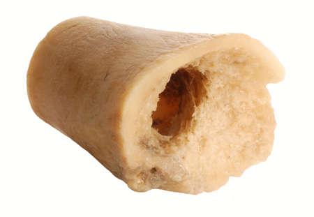 chewed dog bone isolated on white background