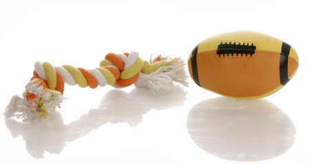colorful dog toys with reflection on white background