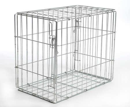 cavie: filo dog crate o animale gabbia con la riflessione su sfondo bianco