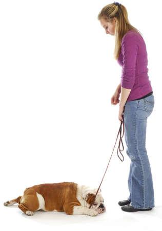 obedience training - woman teaching english bulldog to down on white background