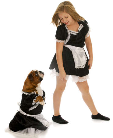 young girl playing dress up with english bulldog with reflection on white background