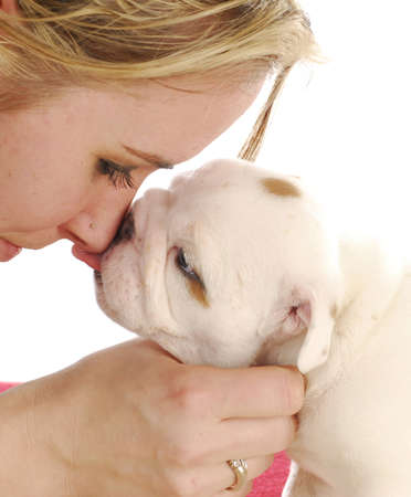 english bulldog puppy kissing woman on the nose