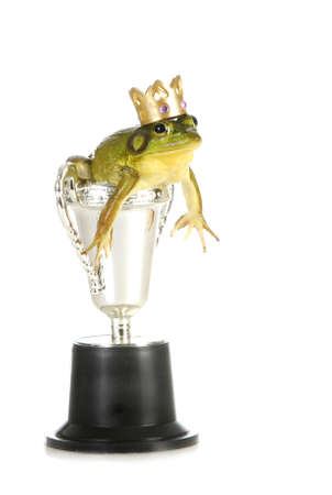 frog in a trophy isolated on white background
