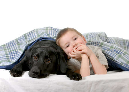 bed sheet: boy and dog - four year old boy and his dog in bed isolated on white background