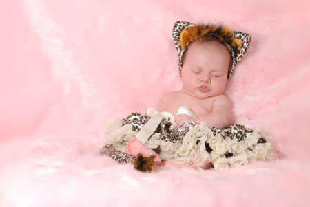 2 months: newborn baby dressed up like a cat on pink background - 2 months old Stock Photo