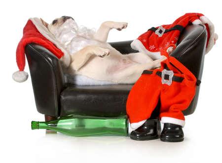 opilý santa - francouzský pes santa, kterým se na gauči s láhví vína na nohy izolovaných na bílém pozadí