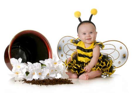 schattige baby verkleed als een hommel zit naast een bloempot op een witte achtergrond Stockfoto
