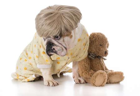 bulldog wearing pajamas sitting beside stuffed teddy bear Banco de Imagens