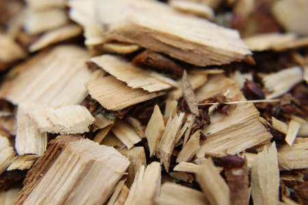 Wood Chips Close-up