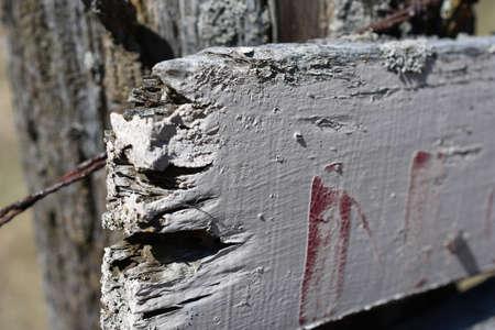 Wooden Decayed Sign Banco de Imagens