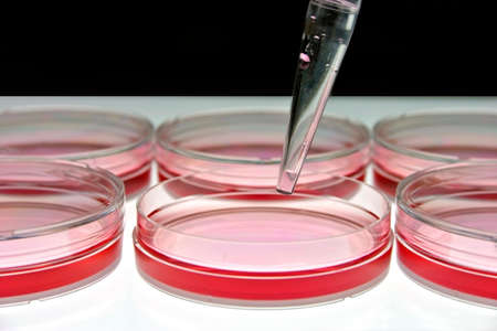 Medical Research Stock Photo - 612580