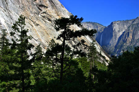 The Yosemite Valley in Yosemite National Park, California photo