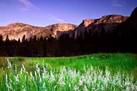 The Yosemite Valley in Yosemite National Park, California Stock Photo - 613854