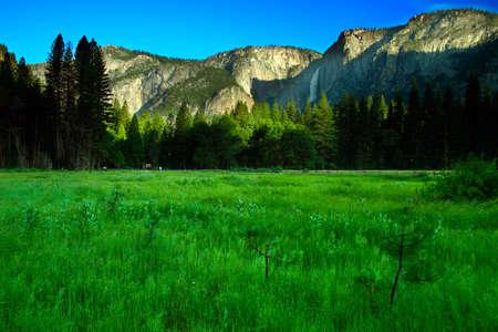 The Yosemite Valley in Yosemite National Park, California Stock Photo - 614194