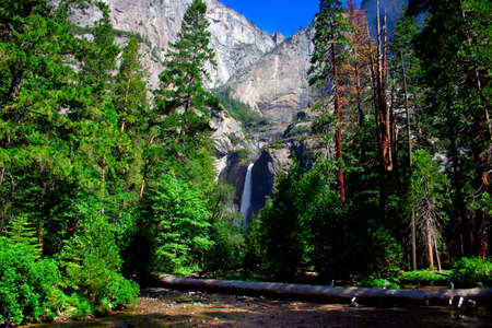 bridalveil fall: Yosemite Falls is the highest measured waterfall in North America. Located in Yosemite National Park in the Sierra Nevada mountains of California, it is a major attraction in the park, especially in late spring when the water flow is at its peak.