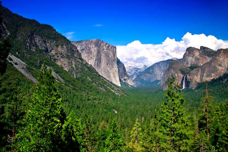 bridalveil fall: Tunnel View at Yosemite National park offers a beautiful panorama of Yosemite Valley with El Capitan on the left, Bridalveil Fall on the right and Half Dome in the center.