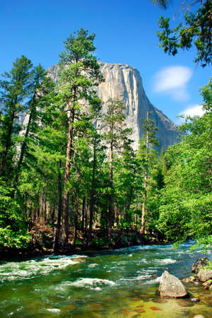 El Capitan is a 3,000 foot vertical rock formation in Yosemite Valley and Yosemite National Park. It is one of the most popular monoliths with rock climbers in the world.  Stock Photo - 614153