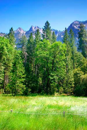 La vall�e de Yosemite en parc national de Yosemite, la Californie