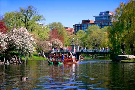 boston common: Swan boat in Boston Public Garden