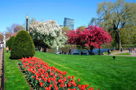 View of Boston Public Garden in spring