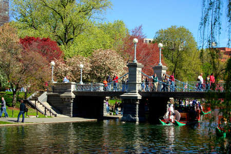 the common: View of Boston Public Garden in spring