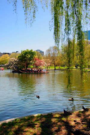 Vue de Boston Public Garden au printemps  �ditoriale