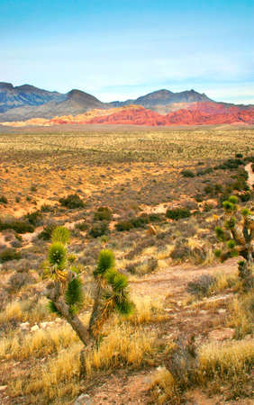 The Red Rock Canyon National Conservation Area is located just a few miles west of Las Vegas and encompasses 197,000 acres within the Mojave Desert.� Red Rock is an� area of world wide geologic interest and beauty.�The most significant geologic feature of Stock Photo - 622655