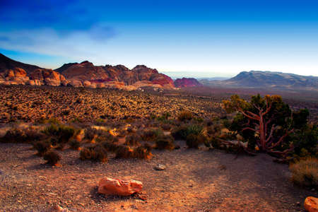 The Red Rock Canyon National Conservation Area is located just a few miles west of Las Vegas and encompasses 197,000 acres within the Mojave Desert.� Red Rock is an� area of world wide geologic interest and beauty.�The most significant geologic feature of Stock Photo - 622634