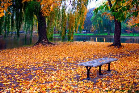 L'automne � Boston Public Garden, Massachusetts, �tats-Unis