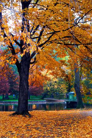 Un automne � Boston Public Garden, Massachusetts, USA  Banque d'images