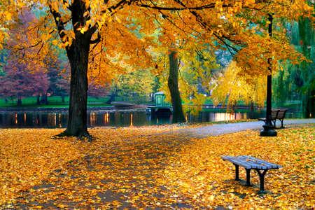 feuillage: L'automne à Boston Public Garden, Massachusetts, États-Unis