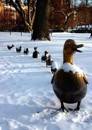 Boston Public Garden in snow, USA   Stock Photo