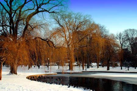 boston common: Boston Public Garden in snow, USA   Stock Photo