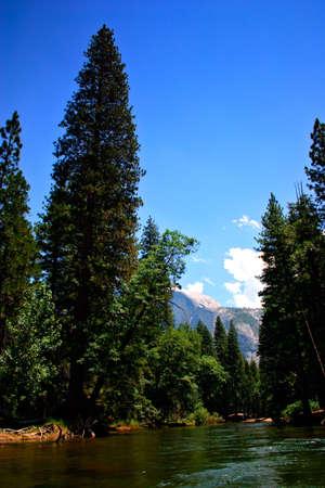 The Yosemite Valley in Yosemite National Park, California Stock Photo - 652735