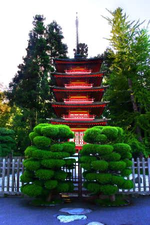 the japanese tea garden: Japanese tea garden at Golden Gate Park, San Francisco, California