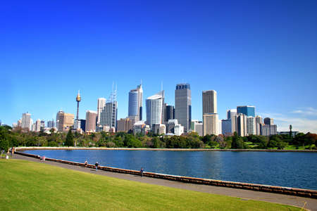 A view of Sydneys skyline from the Royal Botanical Garden