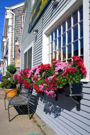 Woods Hole is a census-designated place and village within the town of Falmouth in Barnstable County, Massachusetts Stock Photo - 2354392