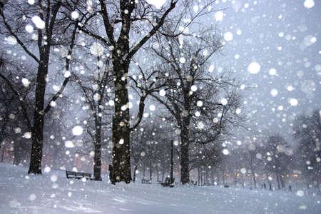Stock image of a snowing winter at Boston, Massachusetts, USA Stock Photo - 2434677